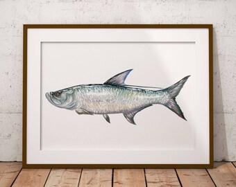 PRINT of Watercolor Tarpon Fish Painting