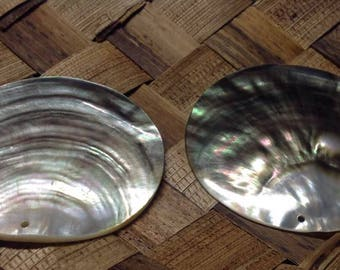 Black or Gold Lip Mother of Pearl Shells.