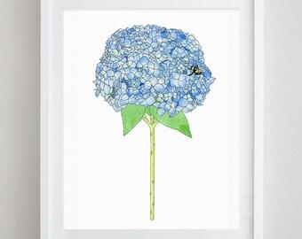 Hydrangea Floral Watercolor Art Print