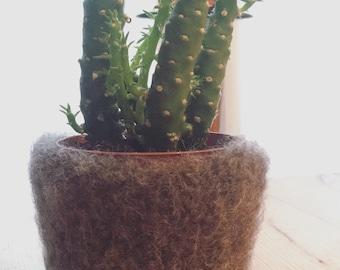 Felted plant holder