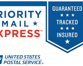 Priority Mail Express by usps