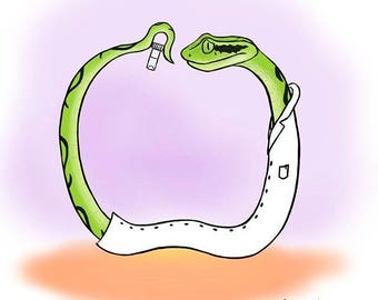 Snake Scientist