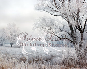 9ft x 8ft Vinyl Photography Backdrop / Perfect Snowy Day / Christmas Scene
