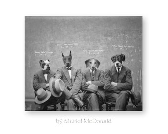 """Funny Dog Art Print Animal Photography Cute Animal Art Print Black and Animals in Clothes Dogs in Suits (2 Sizes Available) """"The Gang"""""""