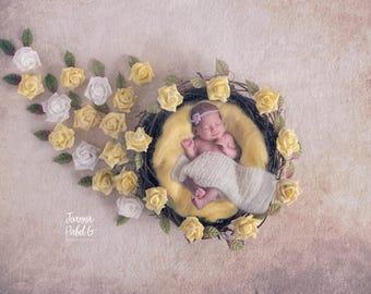 Newborn Digital Backdrop, Yellow roses