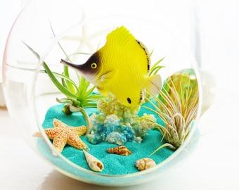 """My Aquarium Beach Terrarium Kit ~ 7"""" Air Plant Terrarium Kit ~ Coastal Living Beach House Decor ~ Yellow Tang Fish ~ Aquarium Gift Idea"""