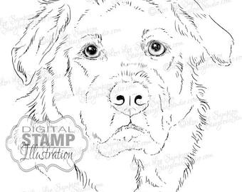 Dog Digital Stamp Art   Drawing Download   Digistamp Dog Sketch   Animal Art   Digital Scrapbooking   Scrapbooking Supplies   Dog Art