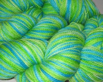 Earth Spinning- Hand-painted Superwash Merino Wool 160 yds. per skein