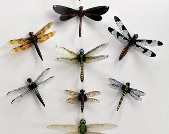 Dragonfly Magnets,Clear wings, Set of 9, Insects, Kitchen Decor, Home Decor, Refrigerator Magnets Multi Color