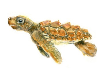 Watercolor Baby Sea Turtle, Baby Sea Turtle Print