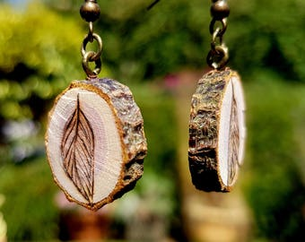 Feather live edge earrings, set of 2 small round ash tree slices in a drop style, with brass hooks for a casual look for nature lovers