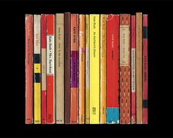 Kate Bush 'Aerial' Album As Penguin Books Poster Print