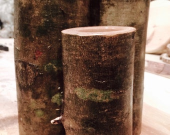 Birch Tree Candle Holders Set of 3