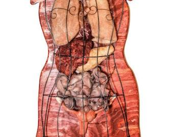 Mixed Media Anatomical Sculpture, Dress Form,  Female Anatomy, Wall Art