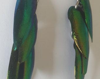 Jewel Beetle Wing Earrings