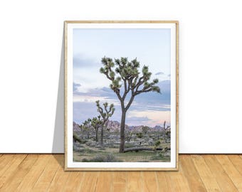 Joshua Tree Print, Joshua Tree Art, Joshua Tree Photography, Joshua Tree Poster, Joshua Tree Wall Art, Desert Printable Download, jt1c2c1