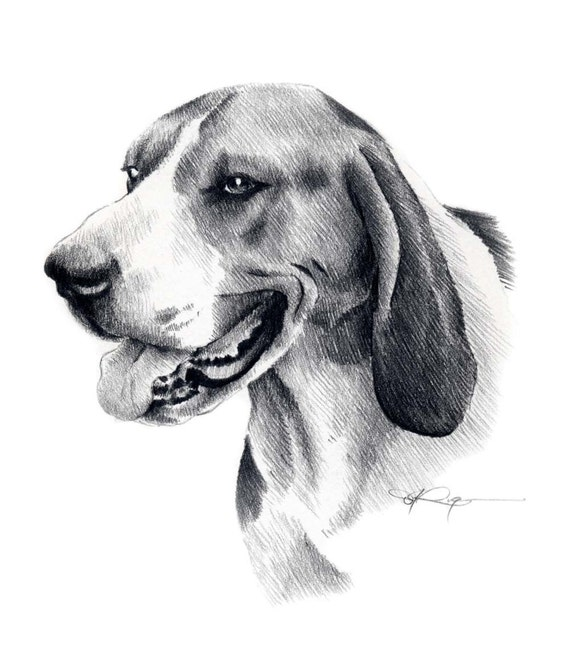 Treeing Walker Coonhound Dog Pencil Drawing Art Print Signed
