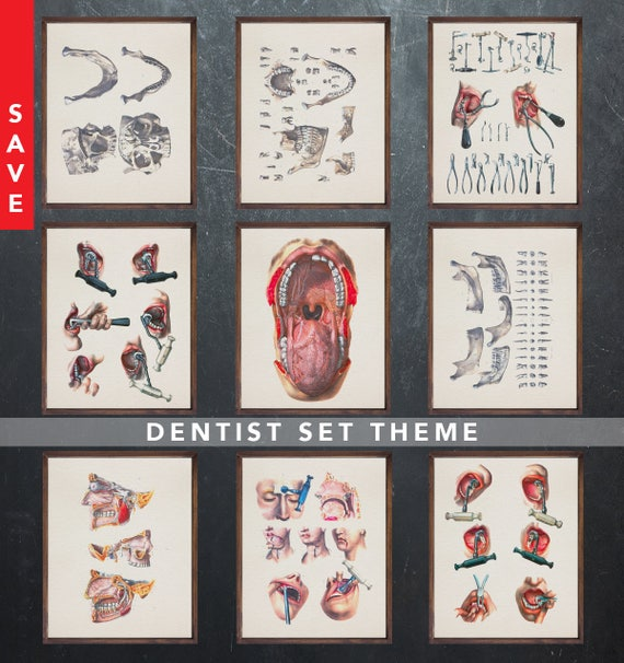 Anatomy Art Posters Dentist Dental Medical Student Gift For