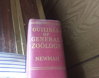 Outlines of General Zoology by Newman