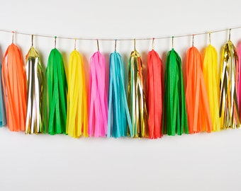 Taco Bout a Party Tassel Garland, Assembled, Fiesta Banner, Cactus Party Decor, Taco Birthday, Cake Smash, Bridal Shower, Fiesta Baby Shower