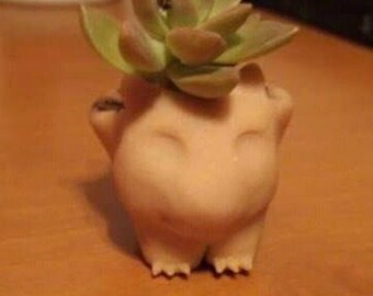 "3"" clay Bulbasaur planter"