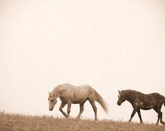 Wild mustang photo, barn decor, rustic wall art, horse photo, equine art, sepia, ranch decor