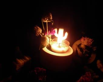 Candle Holder  Christmas tree Christmas cactus &fragrance Apricot Freesia