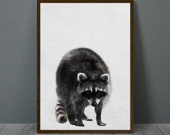 Raccoon Print, Raccoon Wall Decor, Raccoon Poster, Raccoon, Animal Print Wall Decor, Printable Raccoon Wall Art, Raccoon Nursery Print