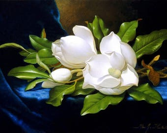 Giant Magnolias on a Blue Velvet Cloth Painting by Martin Heade Art Reproduction