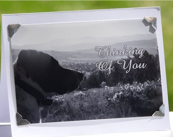 Dog Thinking of You Card Blank Sympathy Greeting Card Sorry For Your Loss Pet Sympathy Card Photo Card Pet Loss Card Dog Sympathy Card