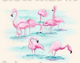 Flamingos Fine Art Print