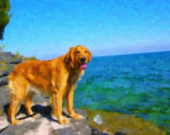 Custom Pet Oil Painting Canvas 12x16