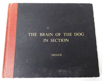 Anatomically Illustrated Brain of the Dog Publication 124 Plates