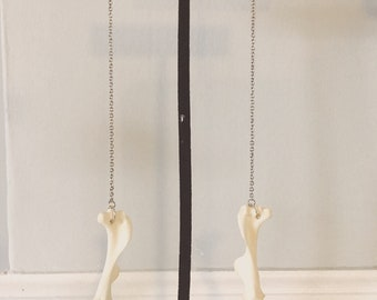 Muskrat Femur Earrings