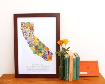 California Wildflower Poster: 25 Native California Wildflowers