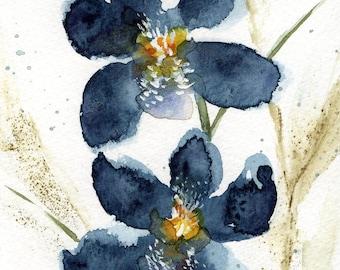 Postcard - Original watercolor - abstract flowers