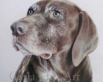 Custom Pet Portrait, dog portrait 11 x 14 pet memorial, best etsy shop, top etsy seller best selling item, pet loss gift