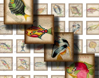 Weird Colorful Fishes (1) Digital Collage Sheet - Square 1 inch or 0.875 inch or scrabble - Buy 3 Get 1 Extra Free