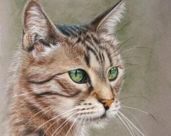 Custom Pet Portrait, Pet Portrait Commission, Pet Portrait From Photo