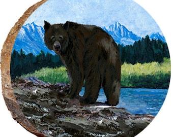 Bear on the Rocks Near the Lake - DAB178