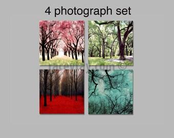 SALE, 4 Seasons Wall Art, Nature Photography, Nature Gift, Four Seasons Art Prints, 4 Seasons Tree Prints