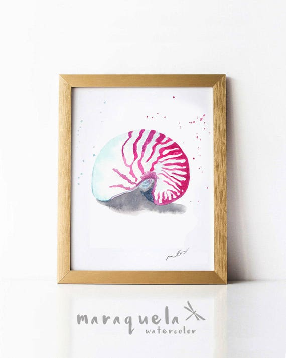 SEASHELL illustration in Watercolor, dark and gray colors hues.