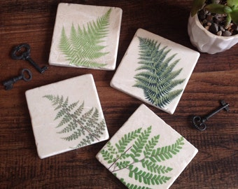 Fern Botanical stone coasters