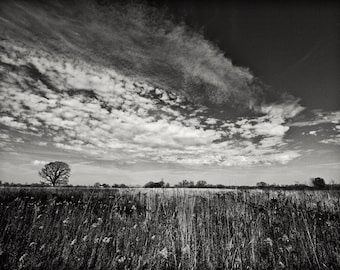 Sky Over Northern Prairie -- Black and White Landscape Photograph