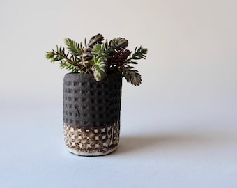 small plant pot in stoneware black for cacti and Succulents