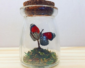 Mini Rustic Bottle | Flutter by Katie | Butterfly Display | All Natural | Accent Jar | Numberwing Butterfly | Sculpture | Home Decor