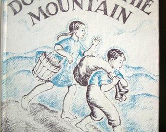 Down, Down the Mountain, Ellis Credle, Vintage 1961 Childrens Hardback, Blue Ridge Mountains