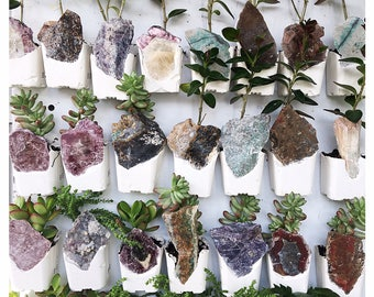 Magnetic Succulent Planter