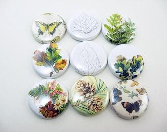 9 fridge magnet set, nature, leaf, butterfly,  Home & Living, Organization, Kitchen Magnabilities Compatible 1239