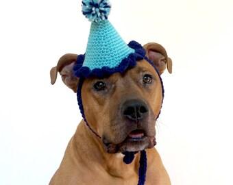 Dog Party Hat, Gotcha Day Hat for a Dog, Blue Party Hat, Pet Birthday Hat, Adoption Gift, Birthday Hat for Dogs, Dog Clothing, Dog Adoption